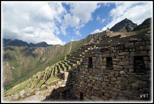 © Bryan Busovicki. Machu Picchu terraces.