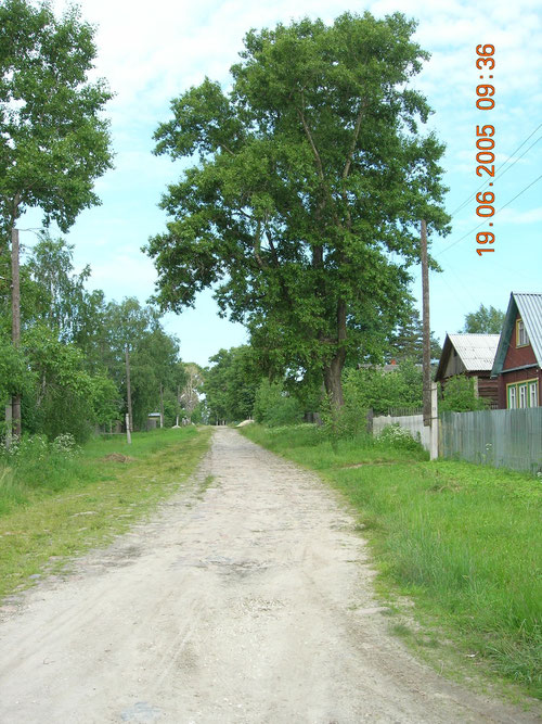 Владимирка. Деревня Старое Семенково. Фото Н. Борода