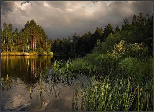 Вечер на реке Пра. Фото Vladimir Podlesnykh