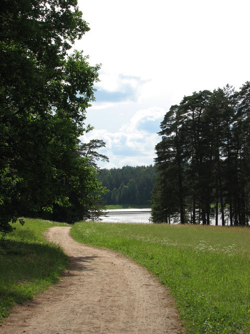 Дорога к озеру Малинец