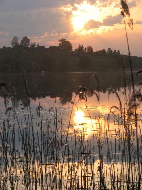 Озеро Трестинское