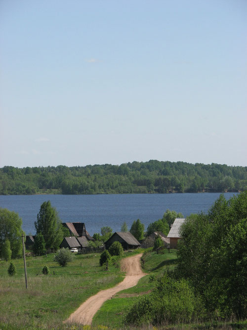 Деревня Новинка