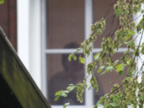 Blick aus dem Fenster (8)