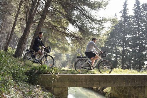 À pied, à vélo, à cheval ou en cabriolet, organisez votre séminaire au vert