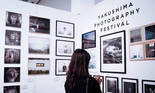 Yakushima Photography Festival à Arles