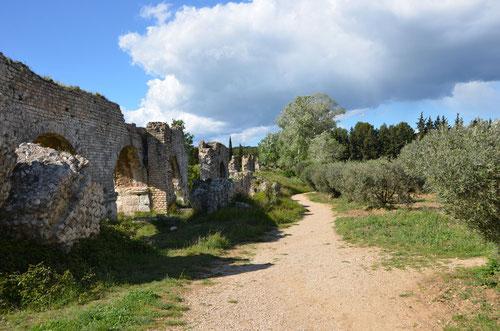 À la découverte de la plus ancienne route de France à Saint-Rémy-de-Provence