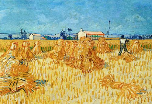 Soleil chaud, soleil tardif. Les modernes indomptés. Fondation Vincent Van Gogh à Arles