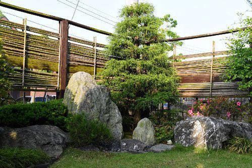 糸檜葉 写真 庭