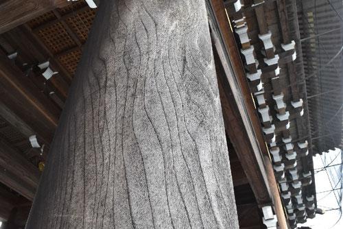 スギの木の柱