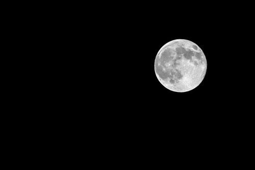 daniele butera fotografo, superluna, supermoon, roma, perigeo lunare, cielo, sky, DBPhotography, mondo, terra, info@danielebutera.com, www.danielebutera.com