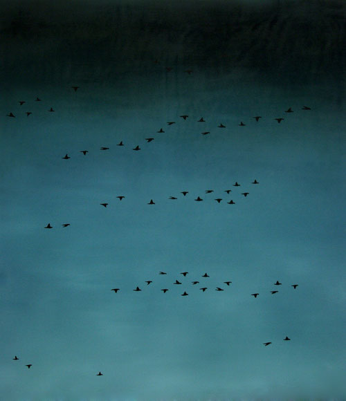 Vogelschwarm 9, 150 x 130 cm, Öl auf Leinwand, 2011