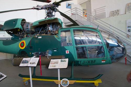 Gazelle  armée Camerounaise