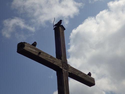 ...und drei andere schräge Vögel über uns am Gipfelkreuz.