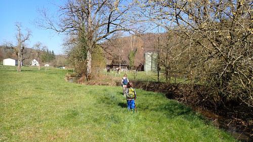 Ab und zu versperrten uns dichte Gebüsche und Dornengewächse den Weg durch das Wasser.