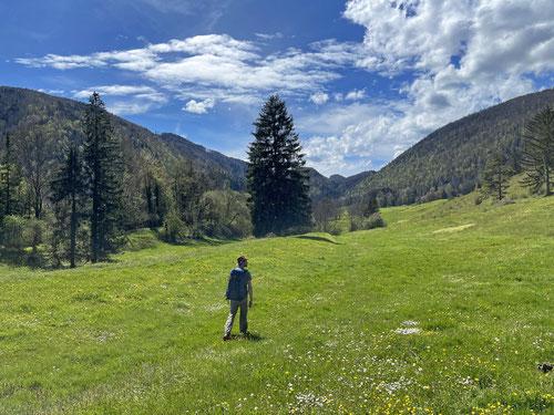 In La Metteneux führt der Wanderweg ausschliesslich über üppige, wunderschöne Wiesen.