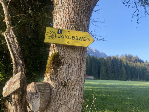 2020/09: Den Jakobsweg gibt es überall.