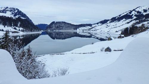Blick auf den Wägitalersee auf dem Weg ins Ziggenbach-Tal.
