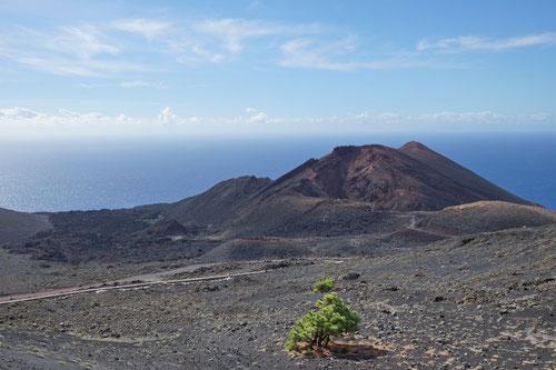 Die letzte Vulkanbesteigung liegt noch vor uns: Volcán Teneguía