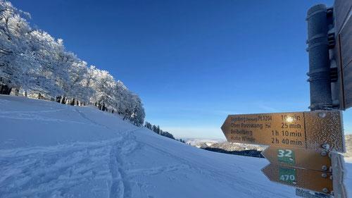 Noch ein paar Meter bis zum höchsten Punkt des Vogelbergs.