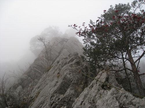 Kletterei in dichtem Nebel: Das alpine Feeling ist perfekt!