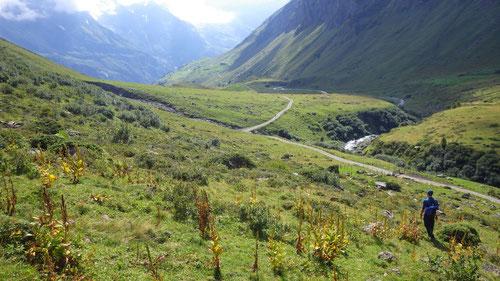 Endlich wieder auf dem Wanderweg, welcher zurück nach Stäfeli führt.
