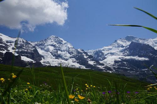 Auf der Kleinen Scheidegg: Blick auf Mönch und Jungfrau