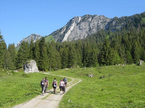 Auf dem Weg zur Kalkwand des Brügglers (im Hintergrund)