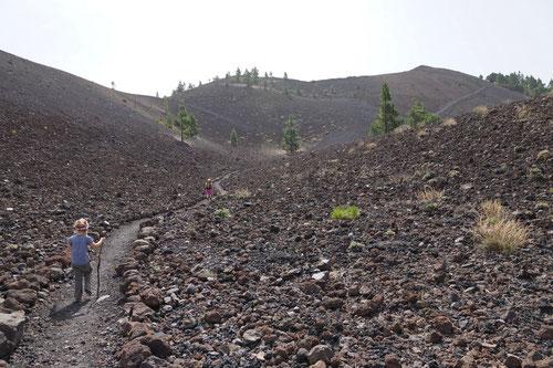 Immer wieder durchquerten wir weite Lavafelder