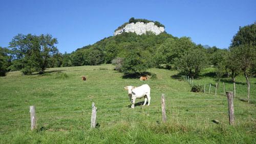 Der Kletterfelsen von La Bréme.