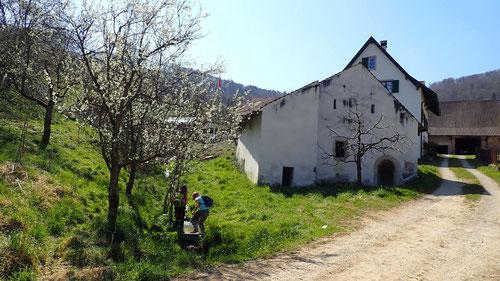 Die Mühle beim Ortseingang von Büren.