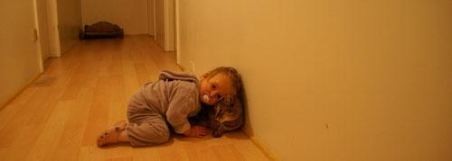 Emilias Katzenliebe