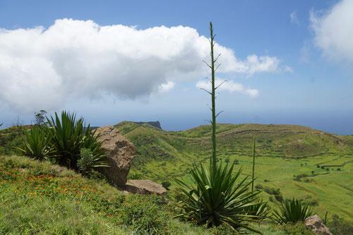 Blick auf den Vulkankrater Fundo Grandi.