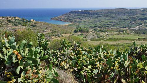 Blick auf Ramla Bay