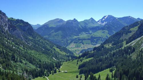Blick von der Alp ins Diemtigtal