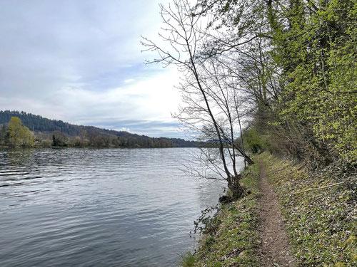 ...immer direkt dem Rheinufer folgend :-)