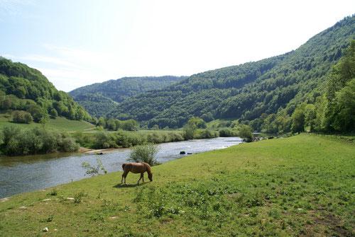 Die liebliche Juraregion