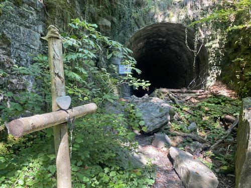 Nun wird es abenteuerlich. Ab durch den Tunnel.