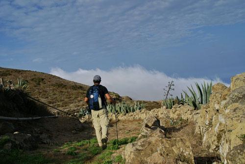 Steiler Abstieg auf der anderen Inselseite. Das Ziel (Villa Valverde) ist nahe!