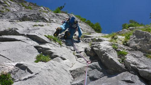 Olli in Alp Plousch