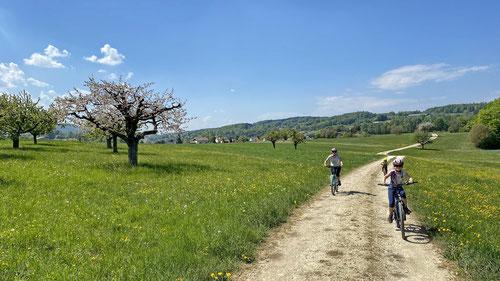 2020/04: Radltour im schönen Schwarzbubenland (CH/SO)