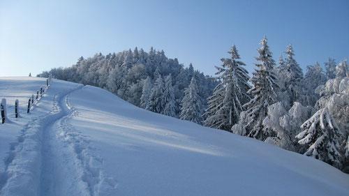 Perfekte Jura Winterlandschaft