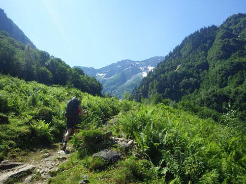 Aufstieg zur Gaulihütte.