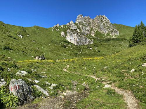 Arlspitze & Schuhflicker in prächtiger Landschaft