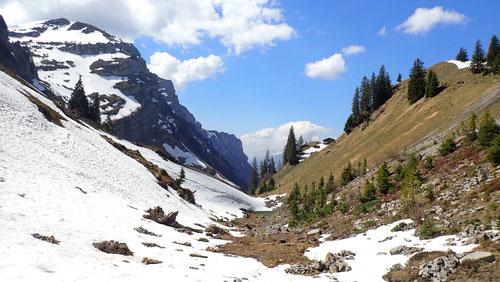 Zuhinterst im Bild erkennt man den Beatenberg mit der grossen Antennenanlage auf dem Gipfel.