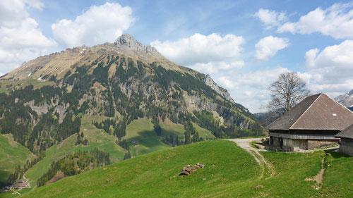 Alphütte bei Baumgarten.