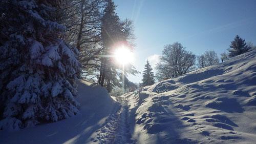 Der Jura im Winterkleid - kurz vor Pt 1079