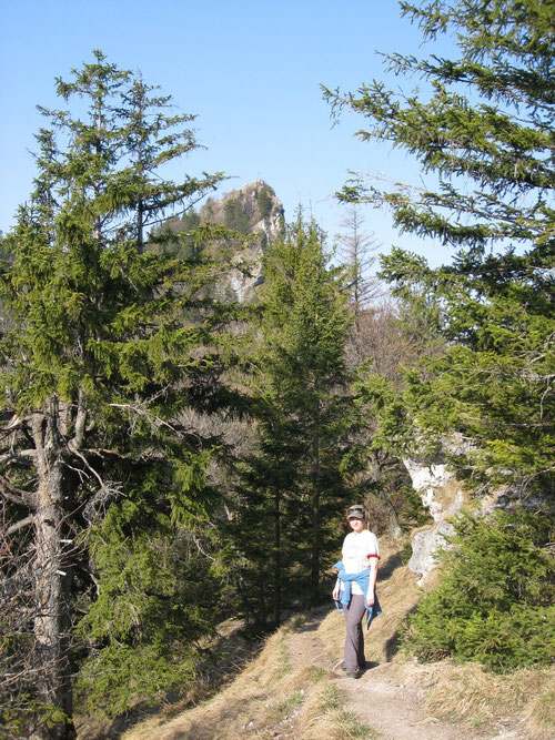 Ein wunderschöner Weg führt zum Gipfel.