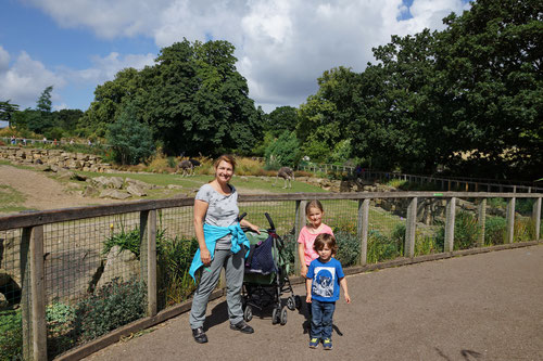 Im Dublin Zoo.