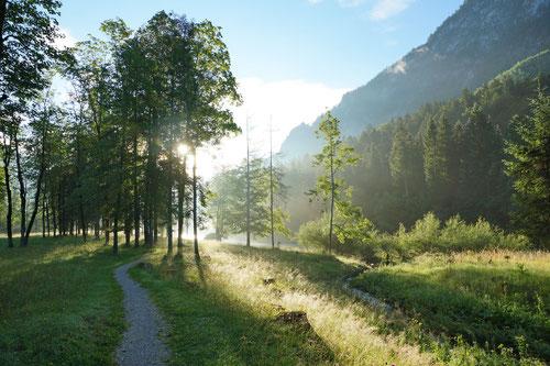 Der Saalach entlang auf dem Weg nach Schneizelreuth.