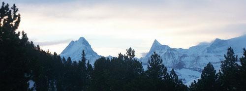 Abendstimmung. Blick von der Hohganthütte.